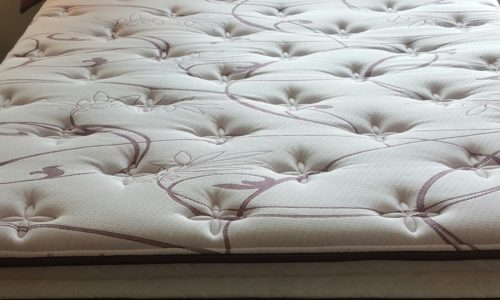 Reardon Pillowtop Mattress Set